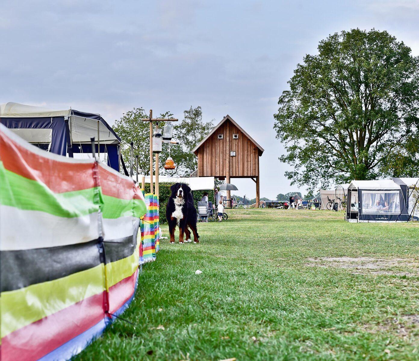 Pinksterweekend 2020 Camping