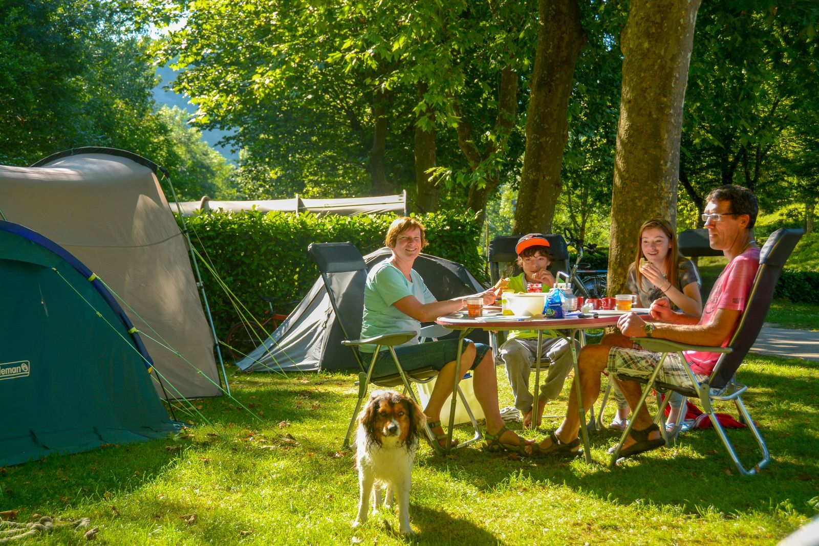 Camping pitches