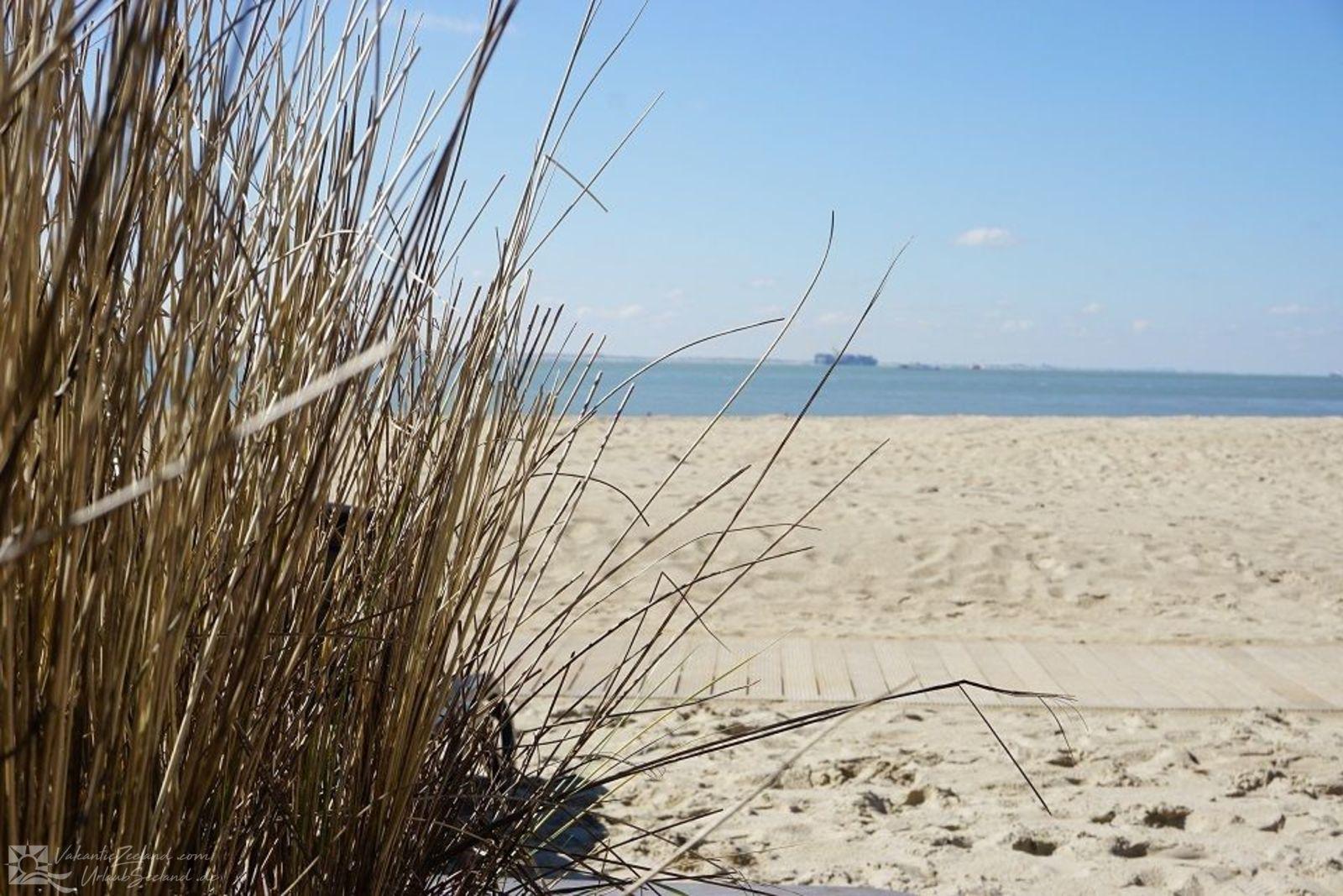 VZ675  Family Beachroom Vlissingen 4p
