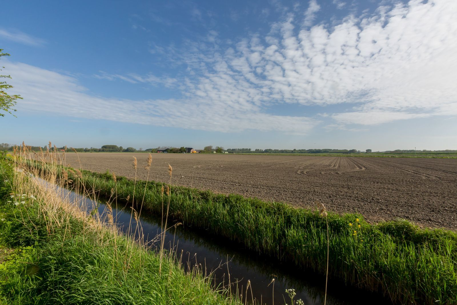 "Chalet - Doelweg 35A l Goedereede ""Knollentuin 170"""