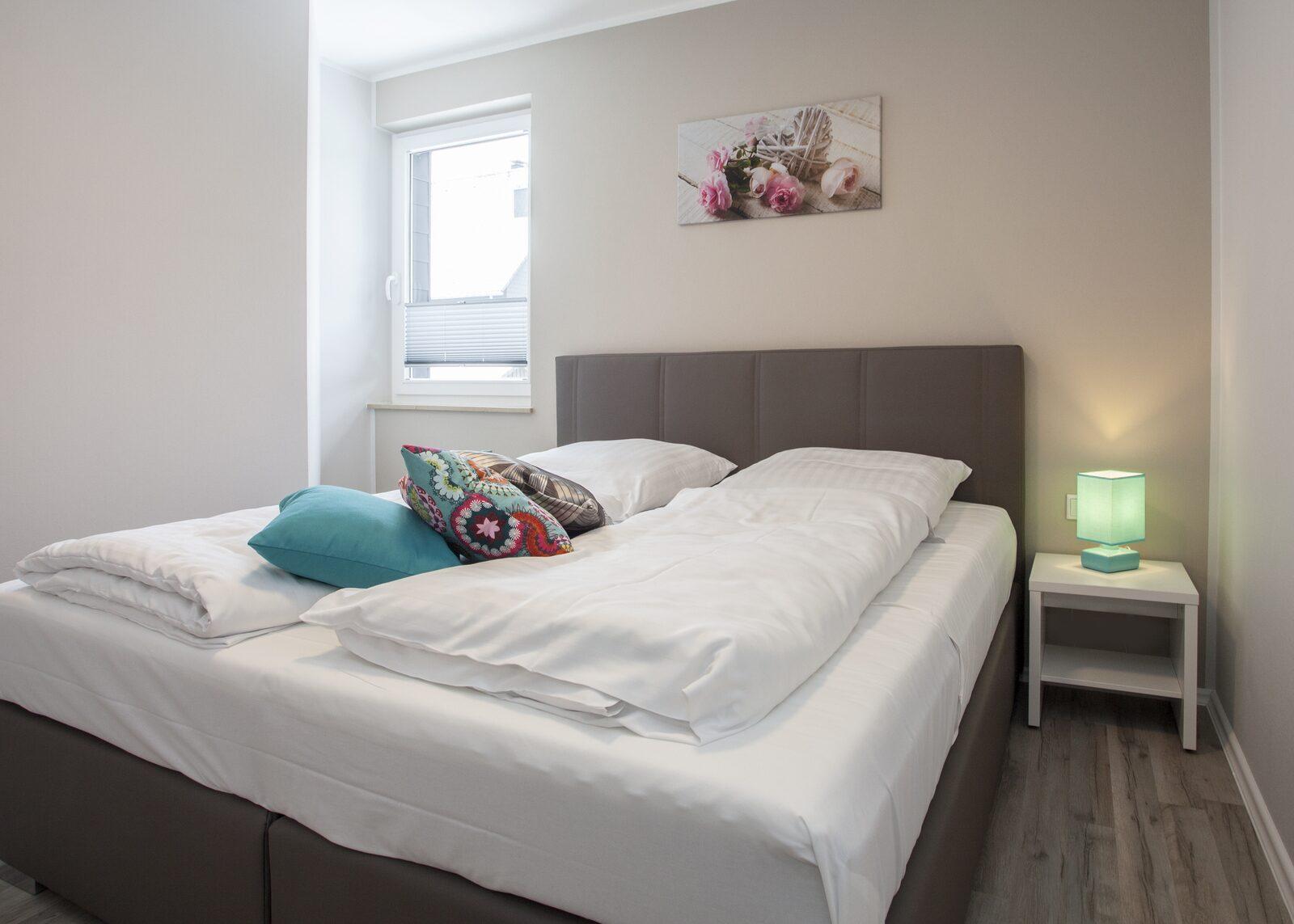 Apartment(s) - Comfort (8 Personen) [2 Apartments: 2 x 4-Pers.]