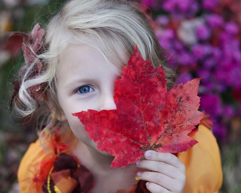 Arrangement Kleurrijke Herfst