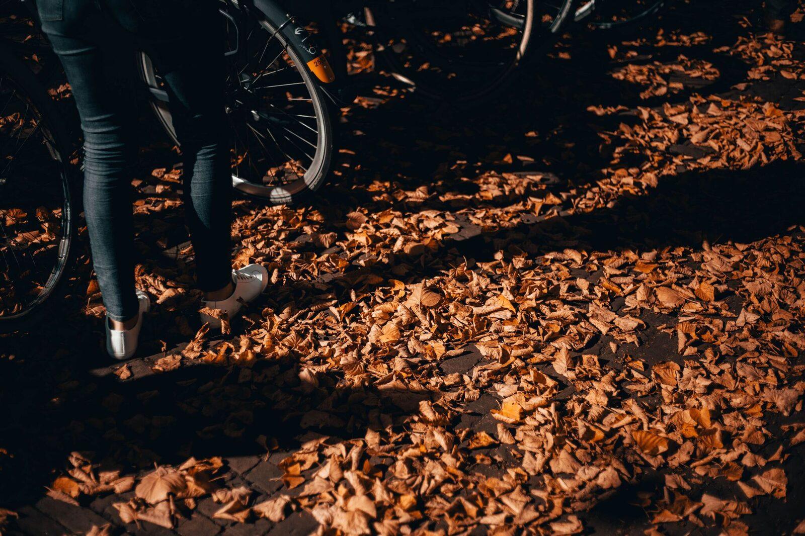 Weekend Fietsarrangement (E-Bike!)