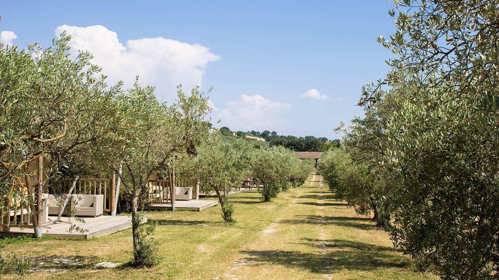 Pian di Boccio | Luxe Sanitair XL 6 Pers.