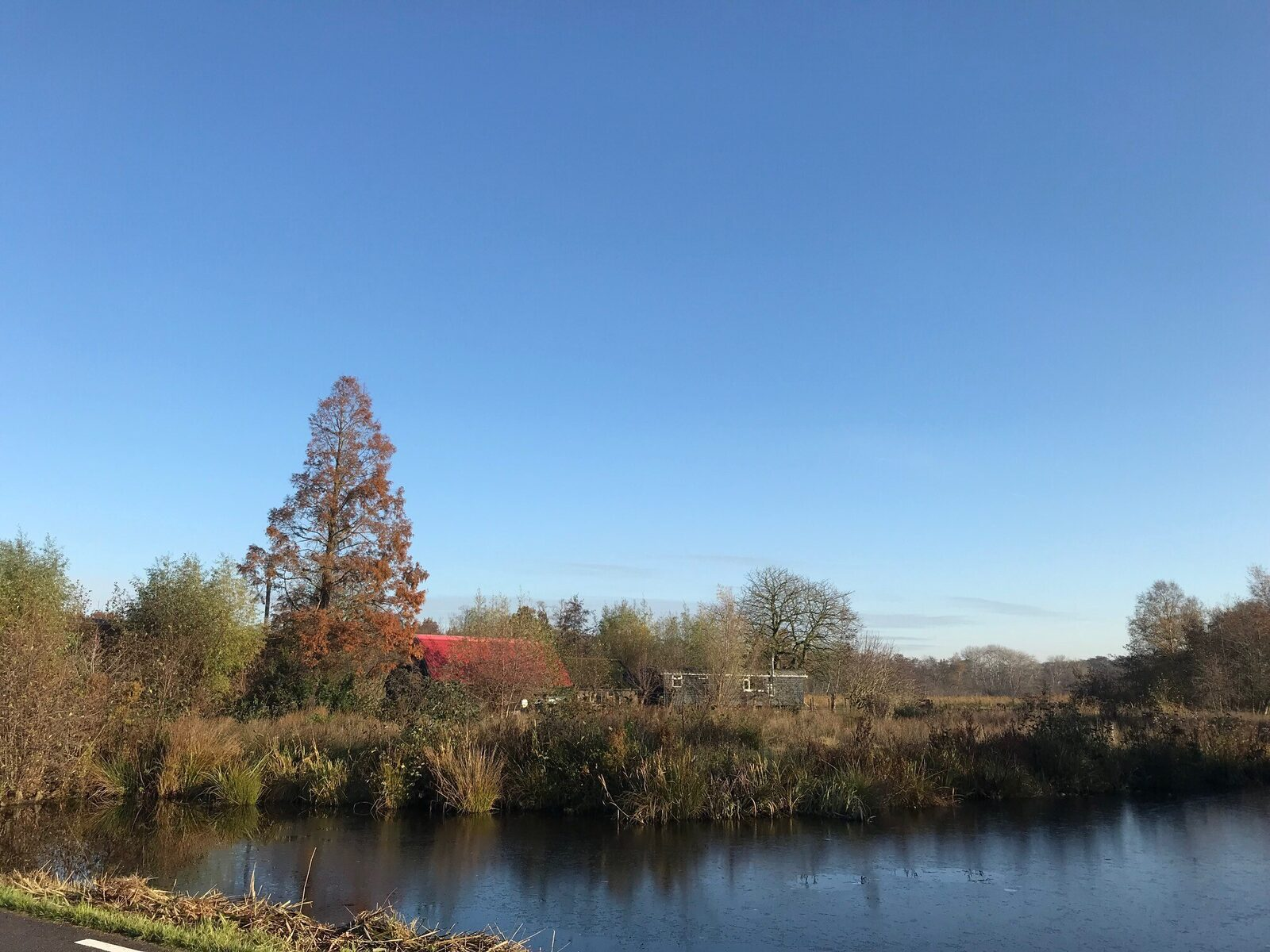 The Dutch Farmhouse in het Groene Hart