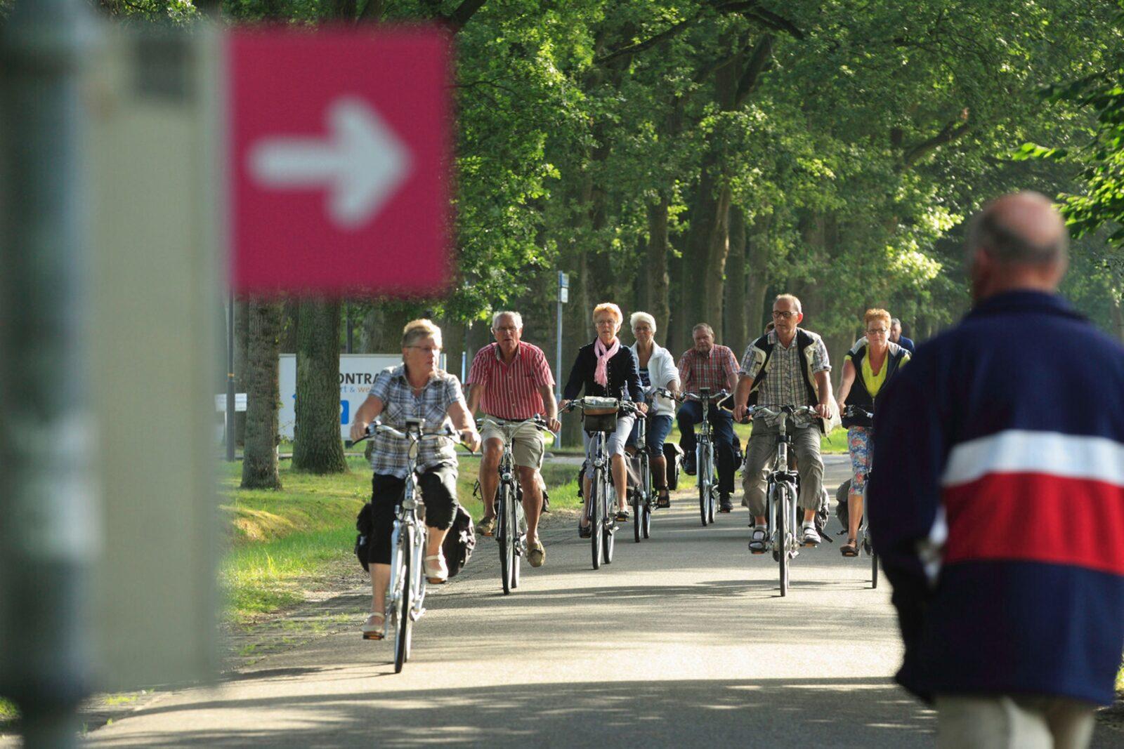 ANWB Vechtdal Fietsvierdaagse Bospark chalet