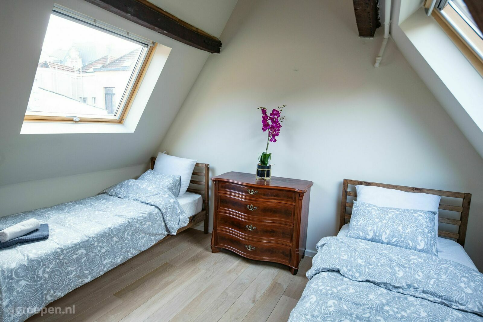 Groupaccommodation Antwerp