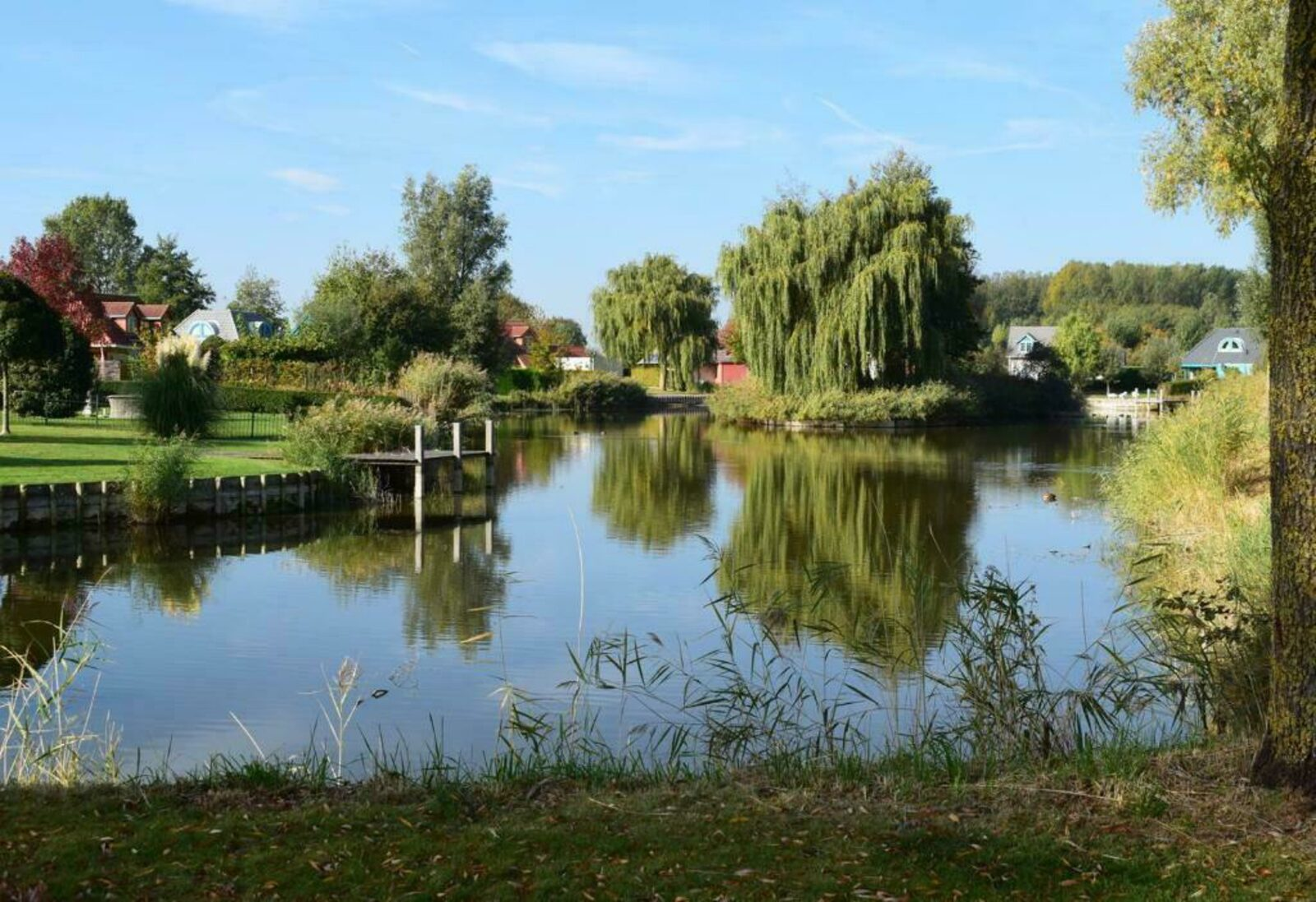 Maxime 203 - Kustpark Village Scaldia