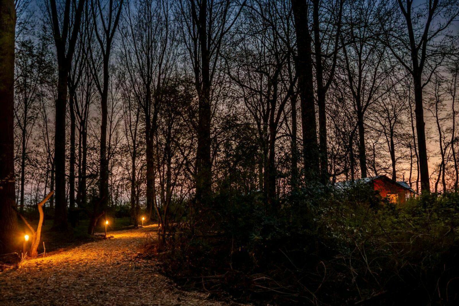 Glamping Groen & Bruin (de 2 naast elkaar gelegen tenten)