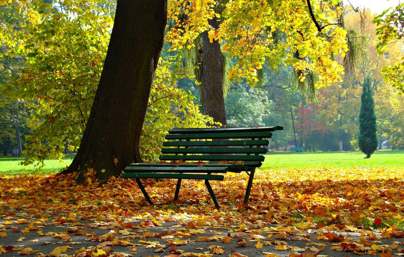 Autumn holiday (1 week)