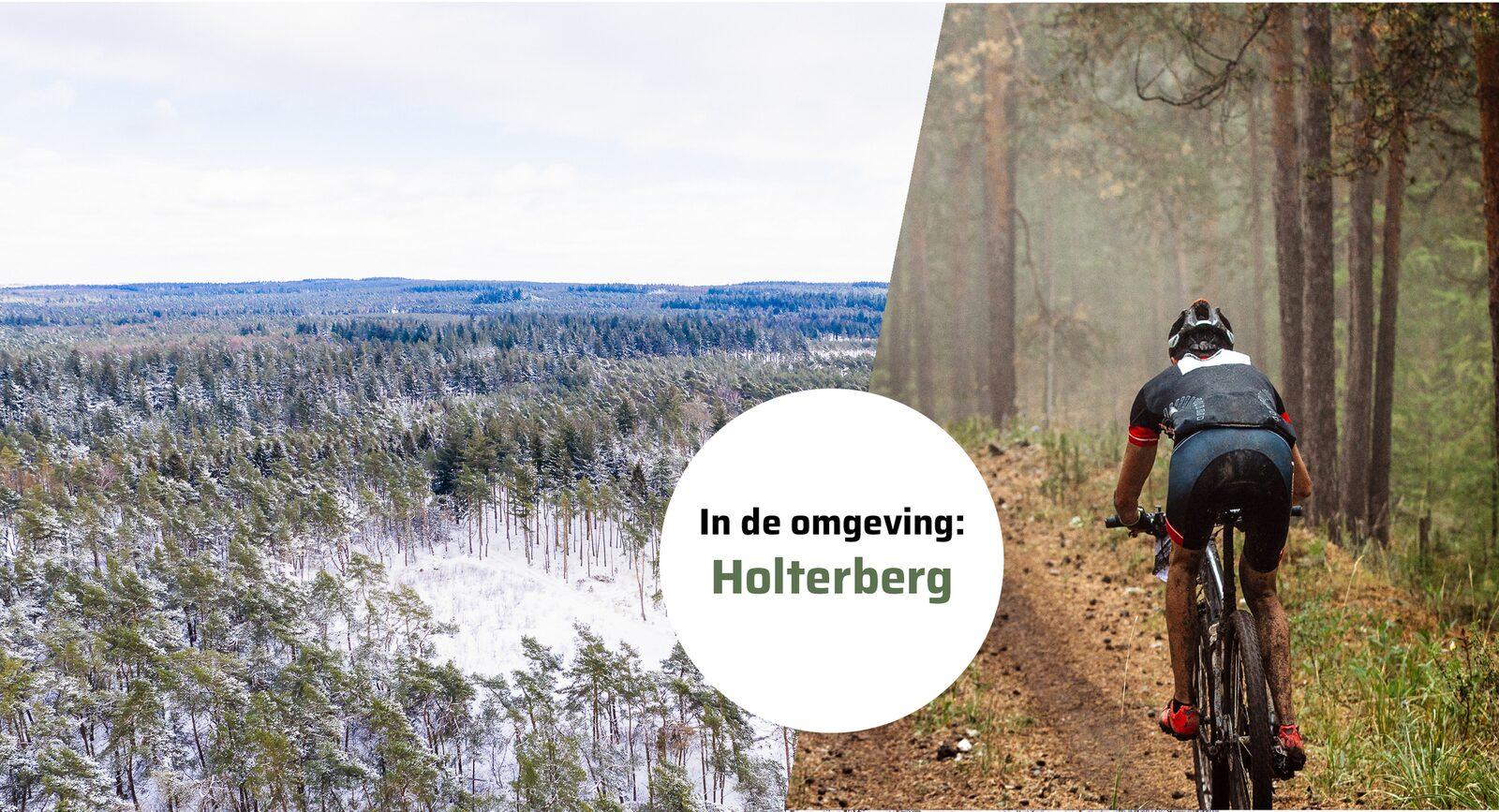 Safaritent a/d Holterberg met Privé Sanitair | 6 pers.