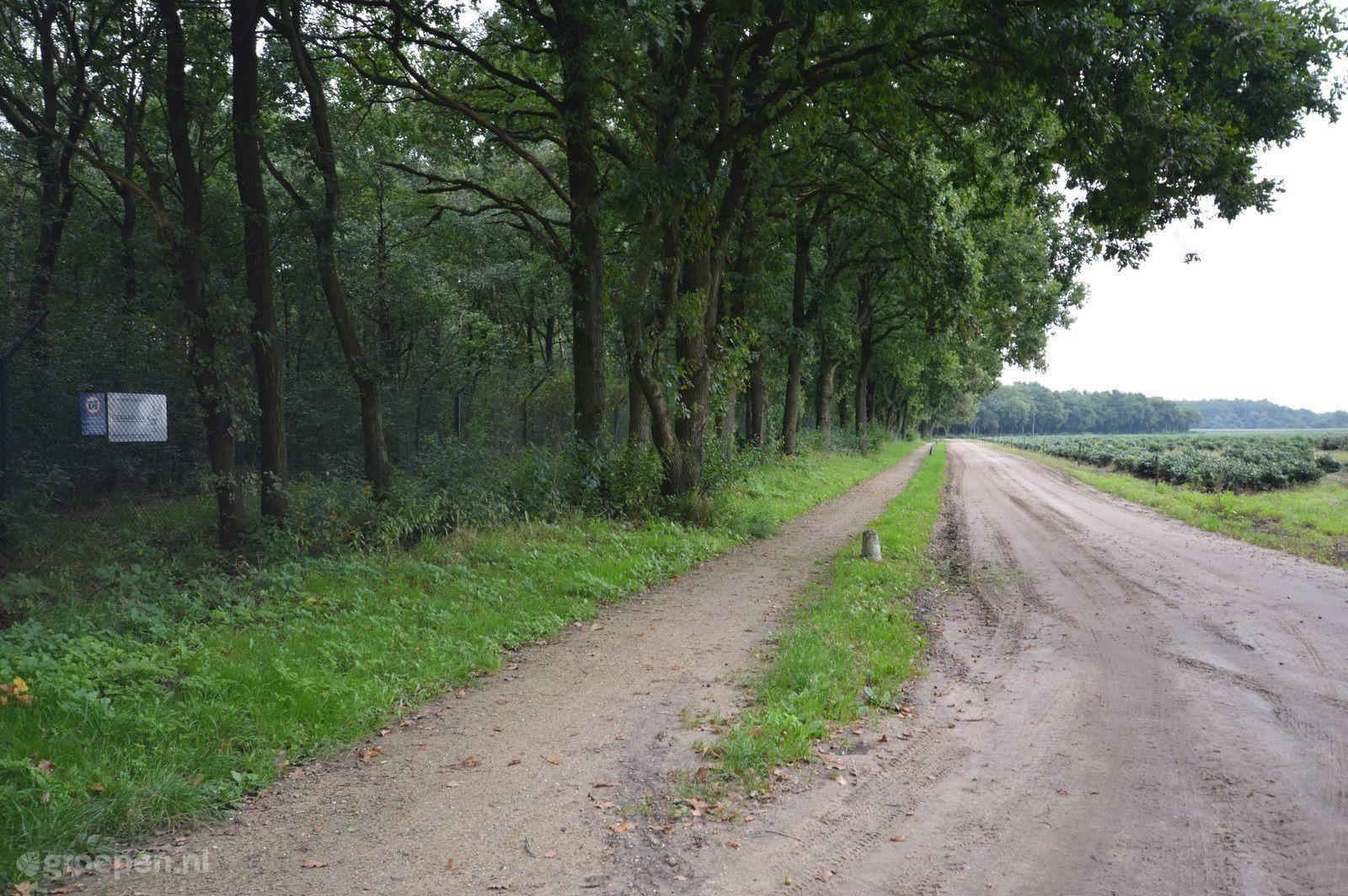 Bauernhäus Meerveld