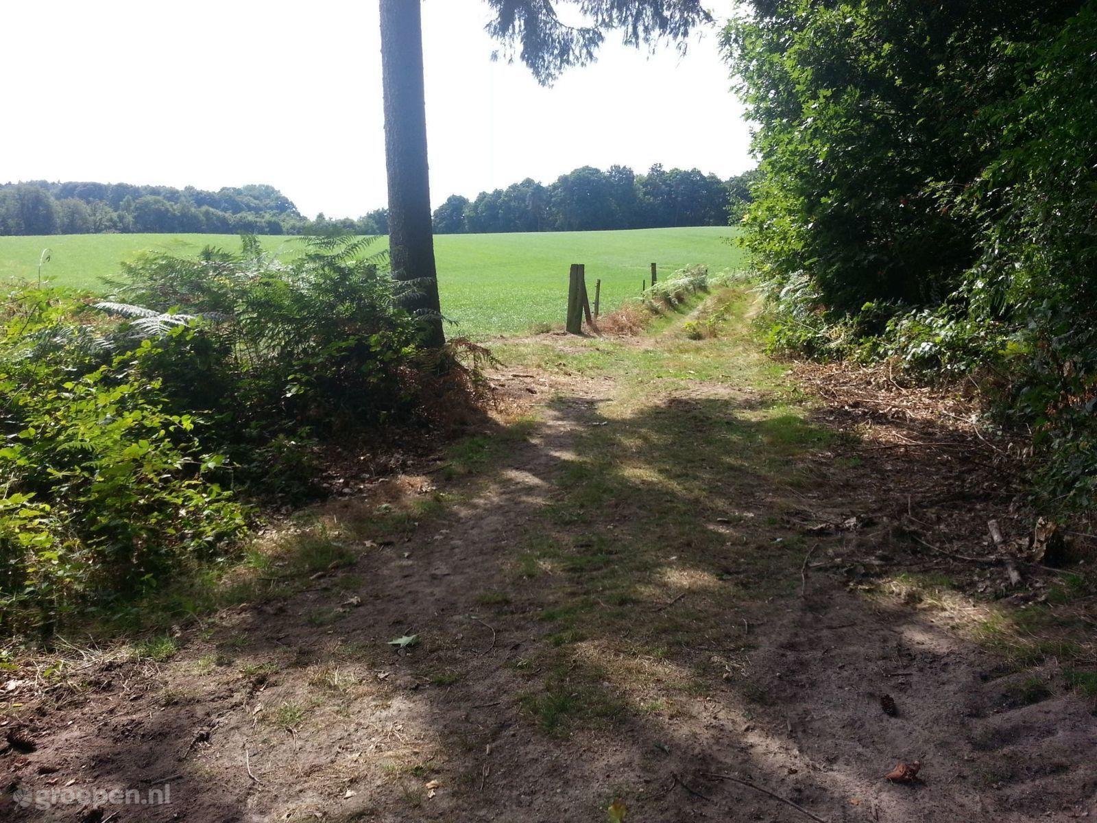 Groepsaccommodatie Winterswijk-Woold