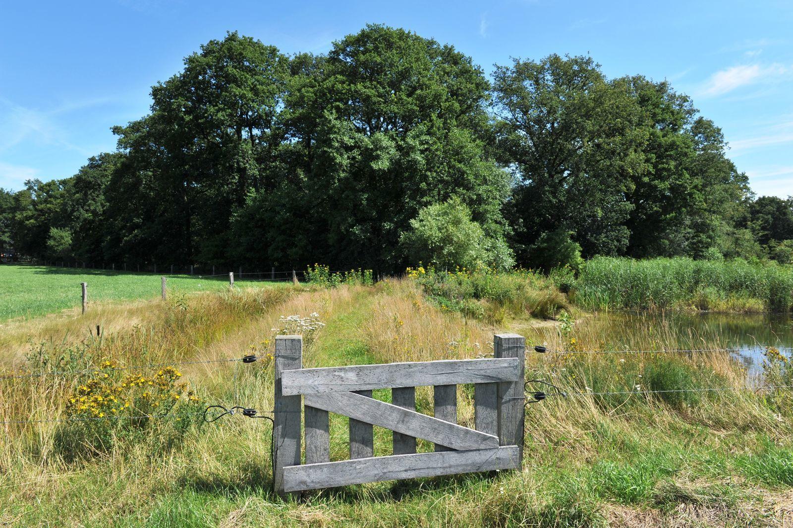 Twentse Buitenleven - Twin Lodgetent - romantisch kamperen op de boerderij