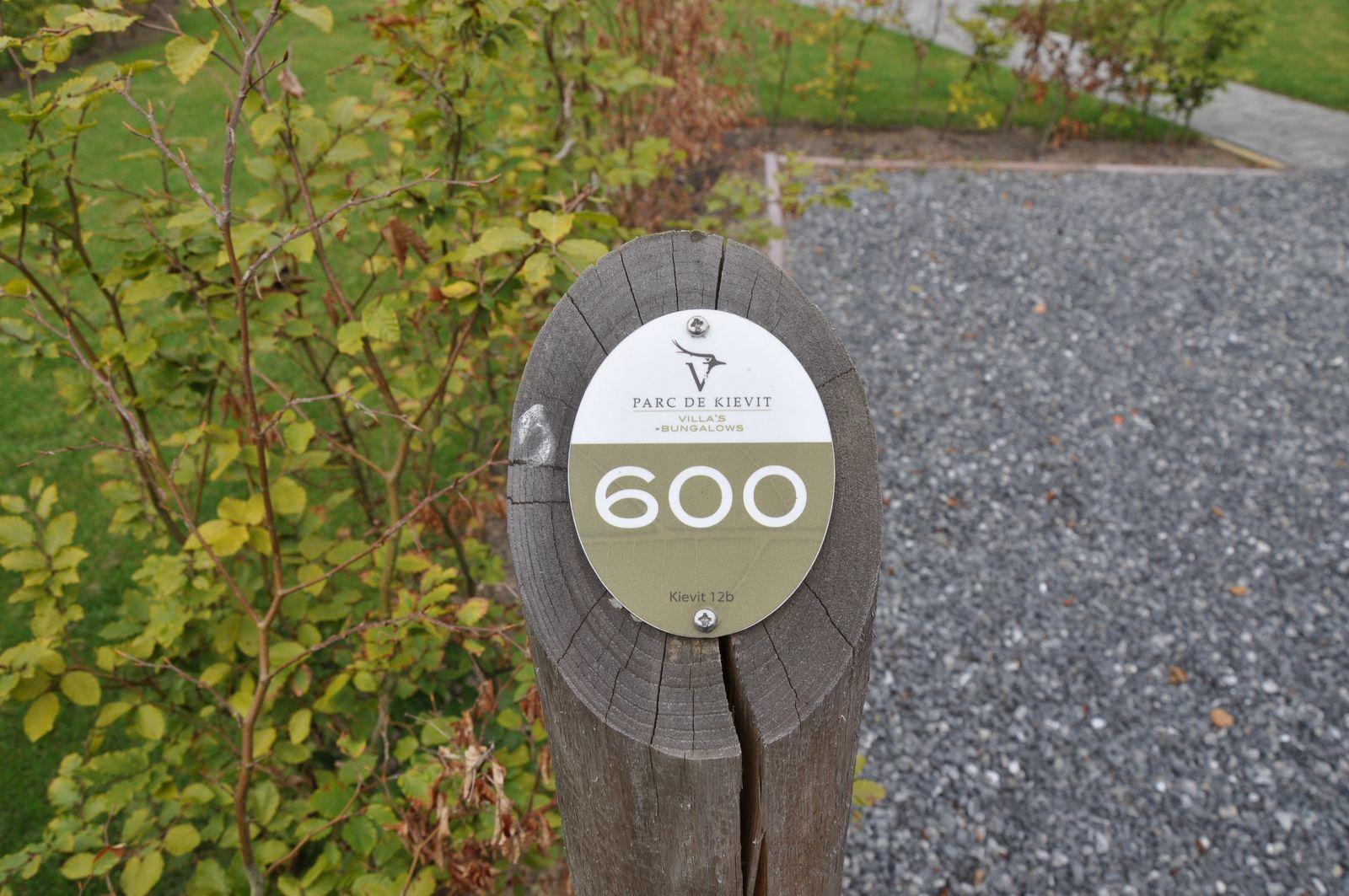 Goudvink 600