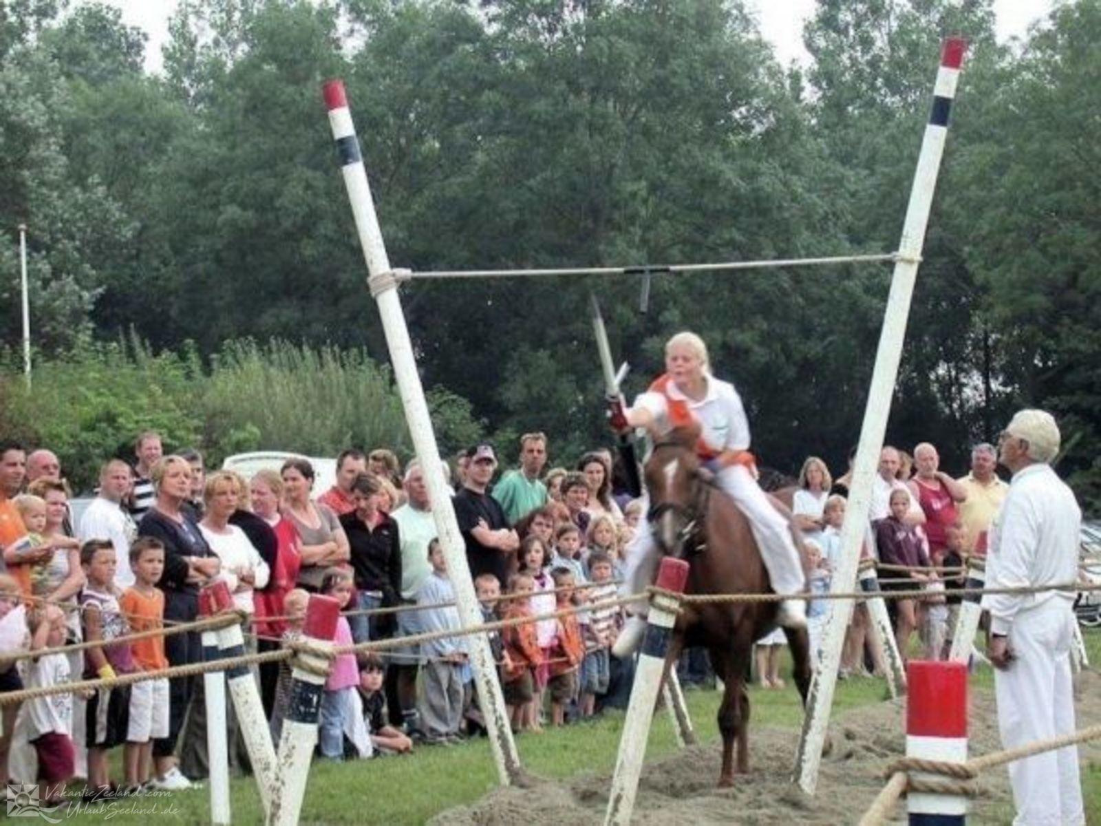 VZ354 Ferienhaus Serooskerke