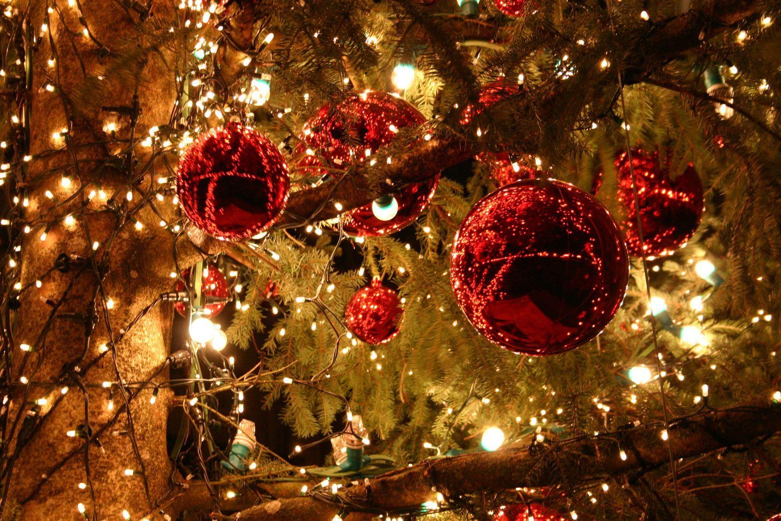 Christmas holiday (7 nights fr-fr)
